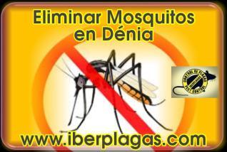 Eliminar Mosquitos en Dénia