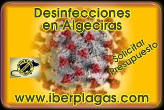 Desinfecciones en Algeciras