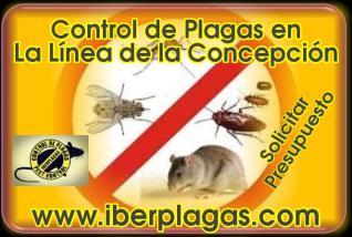 Control de Plagas en La Línea de la Concepción