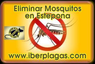 Eliminar Mosquitos en Estepona