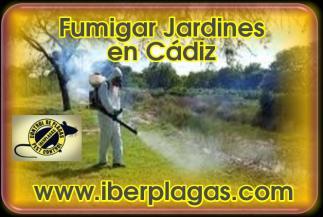 Fumigar jardines en Cádiz