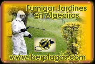 Fumigar jardines en Algeciras