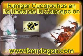 Fumigar cucarachas en La Línea de la Concepción