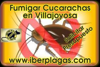 Fumigar cucarachas en Villajoyosa