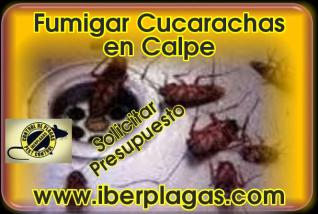 Fumigar Cucarachas en Calpe