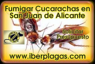 Fumigar cucarachas en San Juan de Alicante