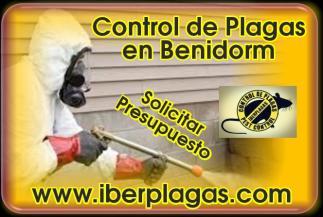 Control de plagas en Benidorm
