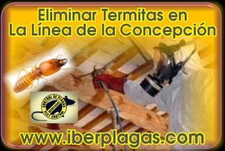 Eliminar Termitas en La Línea de la Concepción